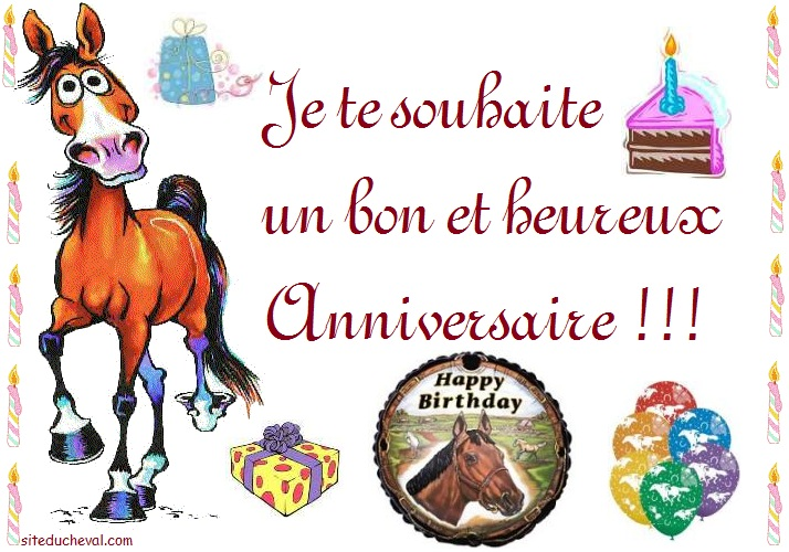 Cartes Anniversaire Cheval Birthday Cards Horse